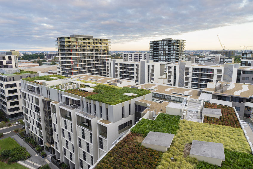 Green Roof on Apartment Complex