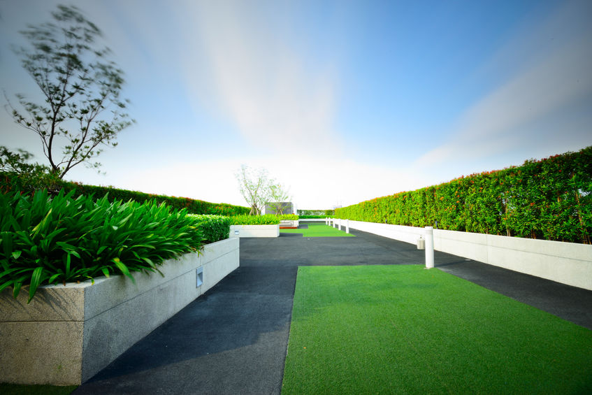 A Green Roof With Plants and Walkway